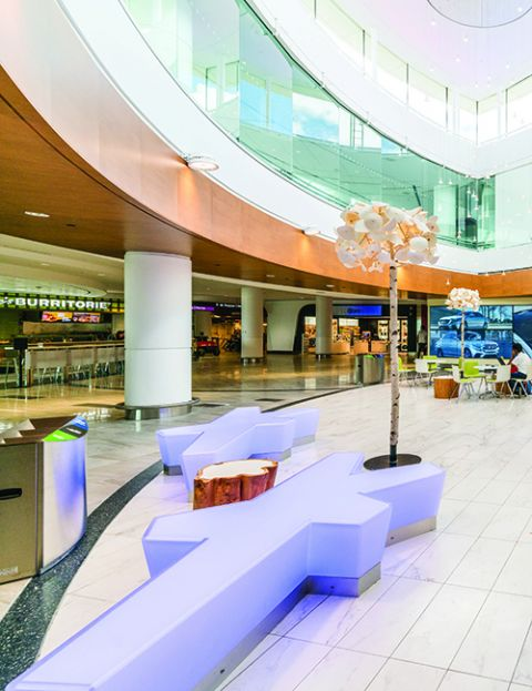 Toronto Pearson International Airport (YYZ)